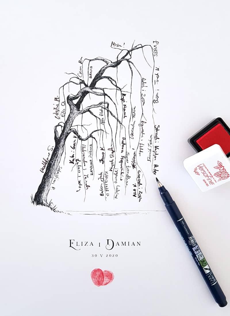 wierzba płacząca, drzewko na podpisy gości