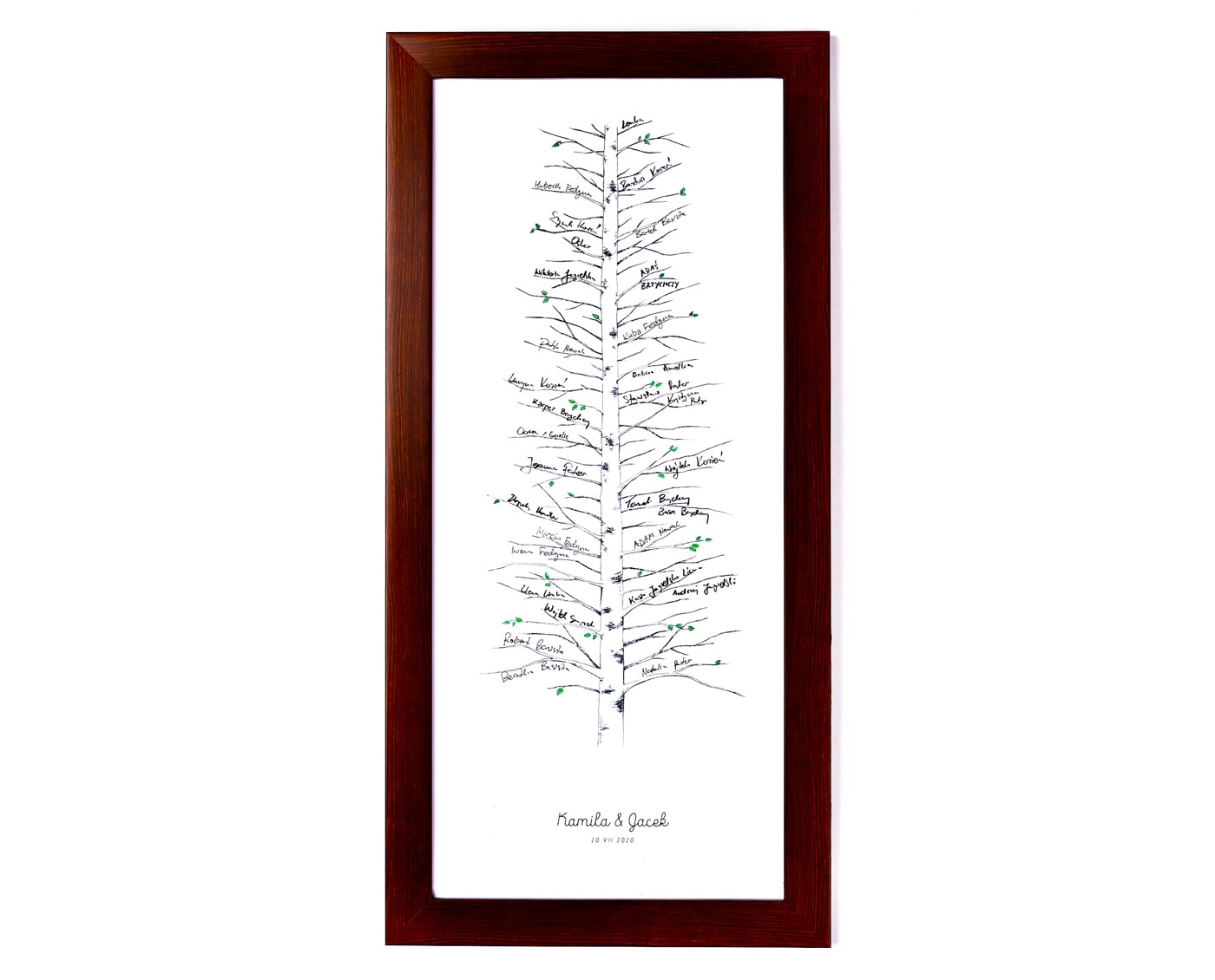 Księga gości z drzewkiem brzozy do pozostawiania podpisów